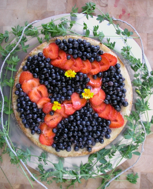 blueberry tarte 1